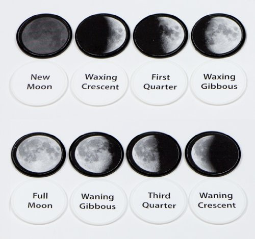 Nature-Watch Moon Phase Memory Game Craft Kit (Makes 1 Project)