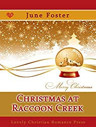 Christmas at Racoon Creek (Snow Globe Christmas Collection)