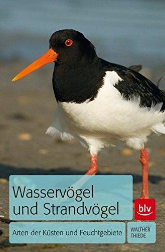 Wasservögel und Strandvögel: Arten der Küsten und Feuchtgebiete