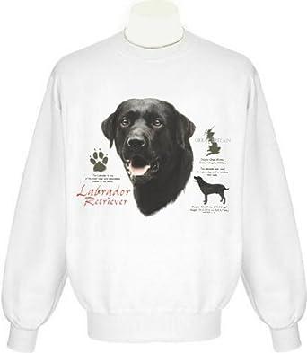 43477bafb082 Amazon.com  Black Labrador Sweatshirt (child Small
