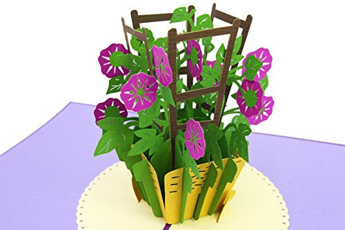 PopLife Morning Glory Flower 3D Pop Up Mother's Day Card - Anniversary Pop Up Valentines Card, Happy Birthday, Sympathy Card - Gift for Her - for Mom, for Daughter, for Wife, for Grandmother, Teacher ()