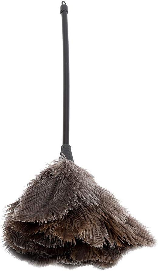 Plumeau en plume dautruche mini-plumeau r/éutilisable lavable pour livres clavier bureau