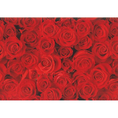 Susy Card 11136207 Wrapping Paper Roll 10 m Red Roses Design