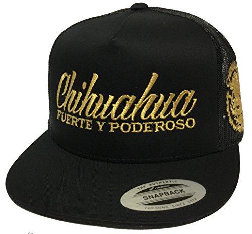- Mexico Chihuahua Fuerte y poderoso 2 Logos Logo Federal Hat Black mesh