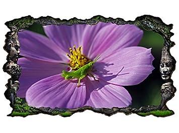 3D Wandtattoo Grille grün lila Blume Grashüpfer Bild selbstklebend ...
