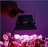 SPL New 32w Blue 554nm Red 660nm Hydroponic Plant Flood LED Grow Lights (32w)