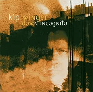 Down Incognito