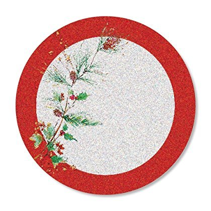 C.R. Gibson Holiday ''Winter Song'' Decorative Disposable Plates , 8 ct. 10.5'' D (Berry Christmas Gibson Holly Dishes)