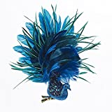 Bundle Pack of 6, Kurt Adler Peacock with Glitter Ornament