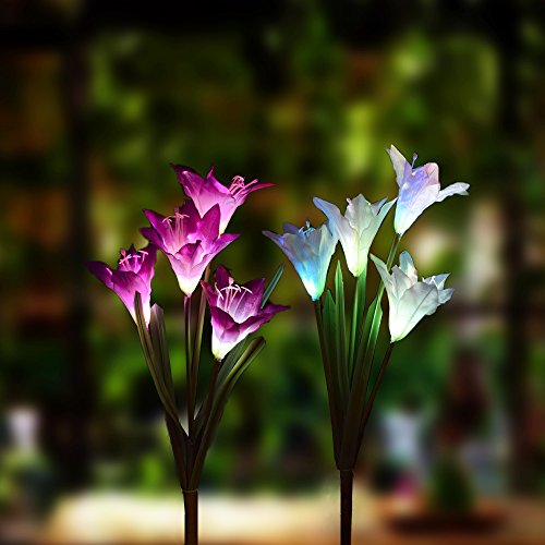 Changing Solar Garden Light (Outdoor Solar Garden stake Lights - 2 Pack Solarmart Solar Powered Lights with 4 Lily Flower, Multi-color Changing LED Solar Stake Lights for Garden, Patio, Backyard (Purple and White))