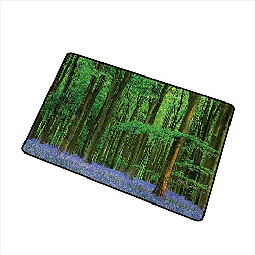 Wang Hai Chuan Woodland Welcome Door mat Spring Sunshine in a Bluebell Wood Summer Dream Holiday Getaway Destination Door mat is odorless and Durable W31.5 x L47.2 Inch,Green Lavander