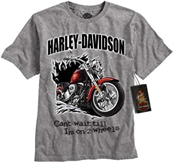 harley davidson boy 39 s motorcycle t shirt gray. Black Bedroom Furniture Sets. Home Design Ideas