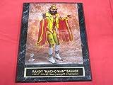 Randy Macho Man Savage WWF Collector Plaque w/8x10 Color Photo