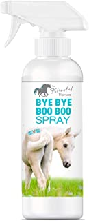 product image for The Blissful Horses Bye Bye Boo Boo Spray All Natural Support, 16-Ounce