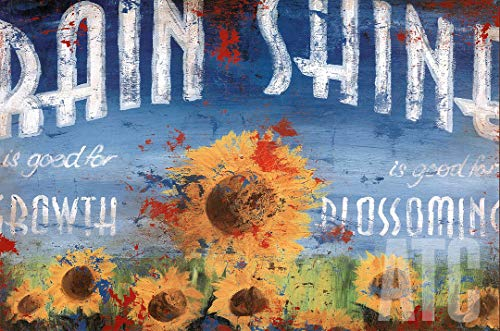 ArtToCanvas 36W x 24H inches : Rain and Shine by Rodney White - Framed Canvas