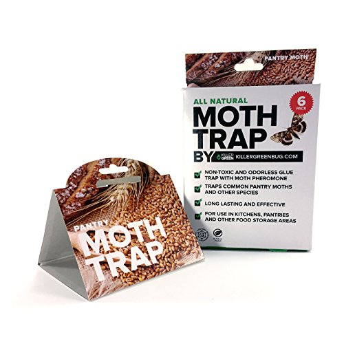 Pantry Moth Traps With Pheromone Attractant by Killer Green - 6 Pack - All Natural and 100% Guaranteed to Work