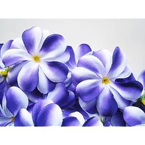 "(24) Purple White Hawaiian Plumeria Frangipani Silk Flower Heads - 3"" - Artificial Flowers Head Fabric Floral Supplies Wholesale Lot for Wedding Flowers Accessories Make Bridal Hair Clips Headbands Dress 91"