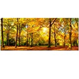 Best Wall Murals - Large Autumn Trees Forest Canvas Wall Art Prints Review