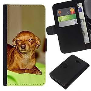 eJoy---La carpeta del tirón la caja de cuero de alta calidad de la PU Caso protector - Sony Xperia M2 - --Skeptical Chihuahua Canine Pet Canine
