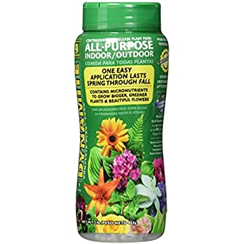 Dynamite 605951 All Purpose Indoor and Outdoor Plant Food, 1-Pound
