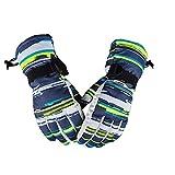 Warm Ski Gloves Men's Women's Winter Fleece Ski Gloves Winter Waterproof Ski Gloves for Hiking Snowboard Cycling Climbing Skiing Motorcycle