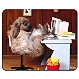 Funny Cute Animal Rabbit Bunny Personalized Custom Gaming Mouse Pad Rubber Durable Computer Desk Stationery Accessories Mouse Pads For Gift MP0534