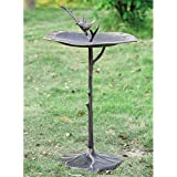 SPI Home 33348 Bird on Branch Sundial/Birdbath