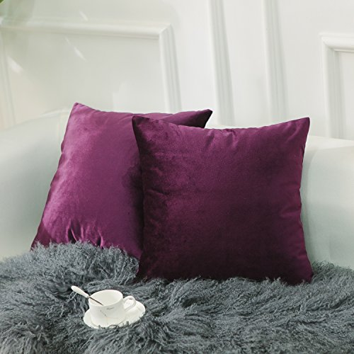 Pillowcases Plain (Home Brilliant 2 Pack Plain Velvet Throw Pillow Covers Decorative Square Cushion Covers PillowCases Set for Couch Bench Bed Car, 45x45 cm(18