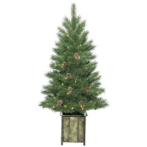Vickerman Potted Newfield Fir Christmas Tree (Potted Christmas Tree)