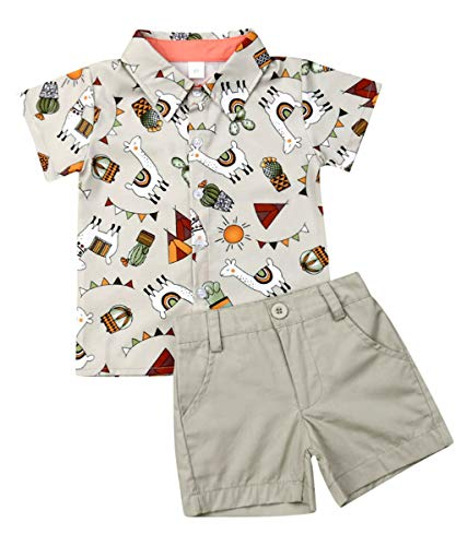 Toddler Little Boy Kids Summer Floral Shirt Blouse Tops + Bermuda Shorts Outfit Set Clothes (Alpaca, 12-18Months) Baby Boys Bermuda Shorts