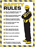 "Workplace Safety Rules Poster 18"" X 24"" Poster"