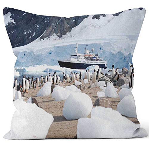 Nine City Antarctic Expedition Throw Pillow Cover,HD Printing for Sofa Couch Car Bedroom Living Room D¨¦cor,40