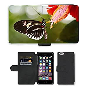 Hot Style Cell Phone Card Slot PU Leather Wallet Case // M00112663 Papilio Rumanzovia Butterfly Animal // Apple iPhone 6 4.7""