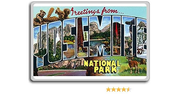 Overhanging Rock Lot of four Yosemite National Park Bears Ohio and Haverford trees Yosemite Vintage Postcards Yosemite Ephemera