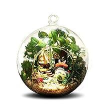 Mini Hanging Wooden House Model, DIY Glass Ball Doll House Model,miniature Dollhouse Toy Birthday Christmas Gift (Totoro club)