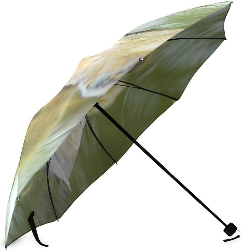 Custom Sweet little ducks Compact Travel Windproof Rainproof Foldable Umbrella