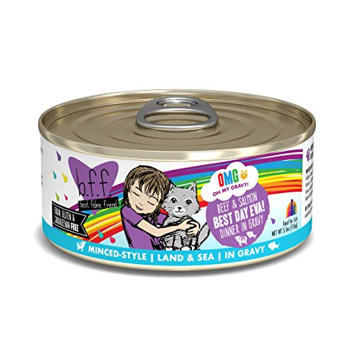 Weruva B.F.F. Omg - Best Feline Friend Oh My Gravy! Grain-Free Wet Cat Food Cans (The Best Cat Food For My Cat)