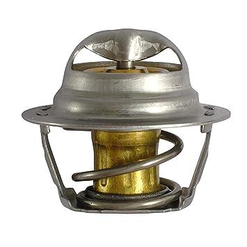 FAE 5202878 Termostato refrigerante