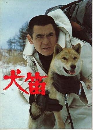 柴犬と菅原文太