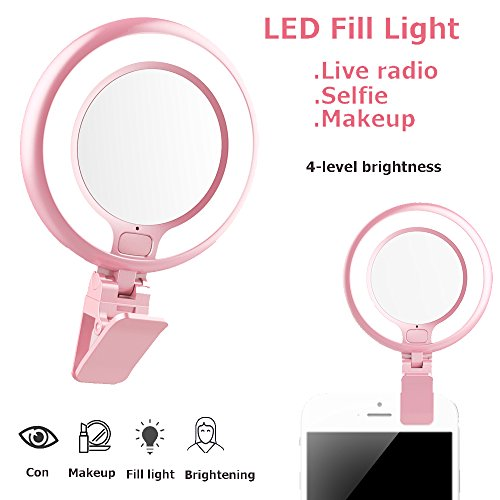Clip On Led Mirror Light