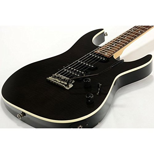 Fernandes / FR-40 See Through Black B0766JTTXL