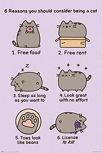Pusheen The Cat - Poster / Print (6 Reasons You Should Consider Being A Cat - Version 2) (Size: 24
