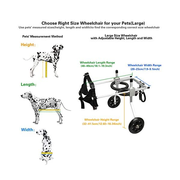 [, Ships from Ca, USA] Anmas Home Adjustable Dog Wheelchair for Small Dogs Hip Height 13″-16″, Wheelchair for Back Legs Rehabilitaion Click on image for further info. 6
