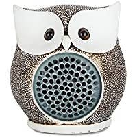 LENMO Owl Bluetooth Speaker Ultra Portable Wired Bluetooth Speaker 4.0 Superior Bass Hand-made Polymer Resin in Retro Style for Desktop PC/Laptop Notebook/Mobile Phone/MP3/MP4 Player 8W (Bone)