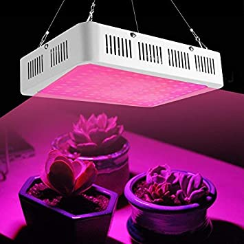 60W 1000W 2000W LED Pflanzen Lampe Voll Spektrum Pflanzenlicht Pflanzenlampe