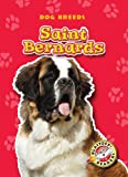 Saint Bernards, Anne Wendorff, 1600145175