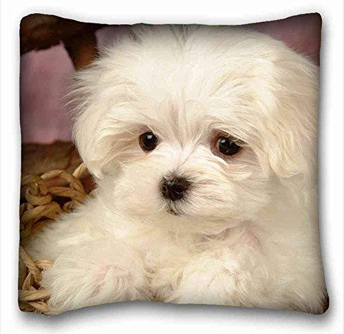 Custom Characteristic (Animals Maltese Dogs) Pillowcase Standard Size 18