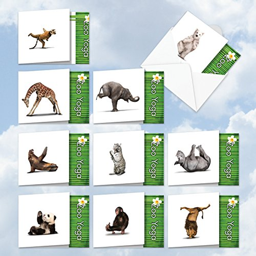 ACQ6547OCB-B1x10 ZOO YOGA: Assorted Box Of 10 'Square-Top' All-Occasion Cards, W/12 Envelopes (10 Designs, 1 Card Per ()