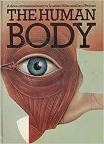 Human body dynamics : classical mechanics and human movement