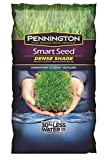 Pennington Smart Seed Dense Shade Grass Seed Mix - 7 LB